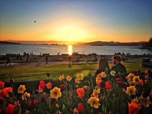 Good seats. #veryvancouver #englishbay #westendvancouver #sunset #vancouver #vancouverbc #springtime