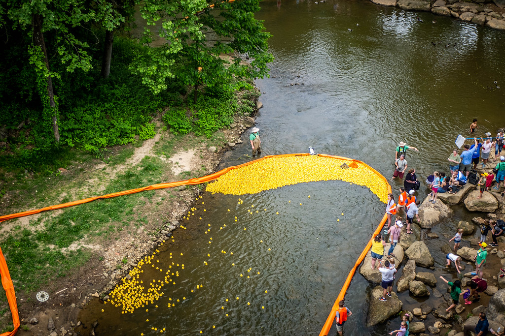 2019 Reedy Duck Derby