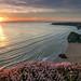 North Cornwall - sunset over Bedruthen Steps
