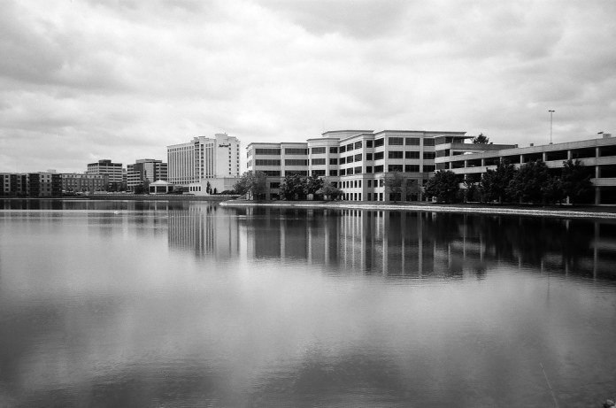 On the pond in the office park