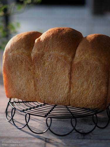 ローズマリー酵母のトマトパン 20190525-DSCT3704 (2)
