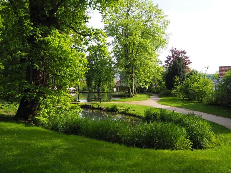 Wo Träumereien blühen II – Schlosspark, 35418 Großen Buseck