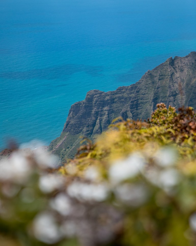 kalalau lookout kauai