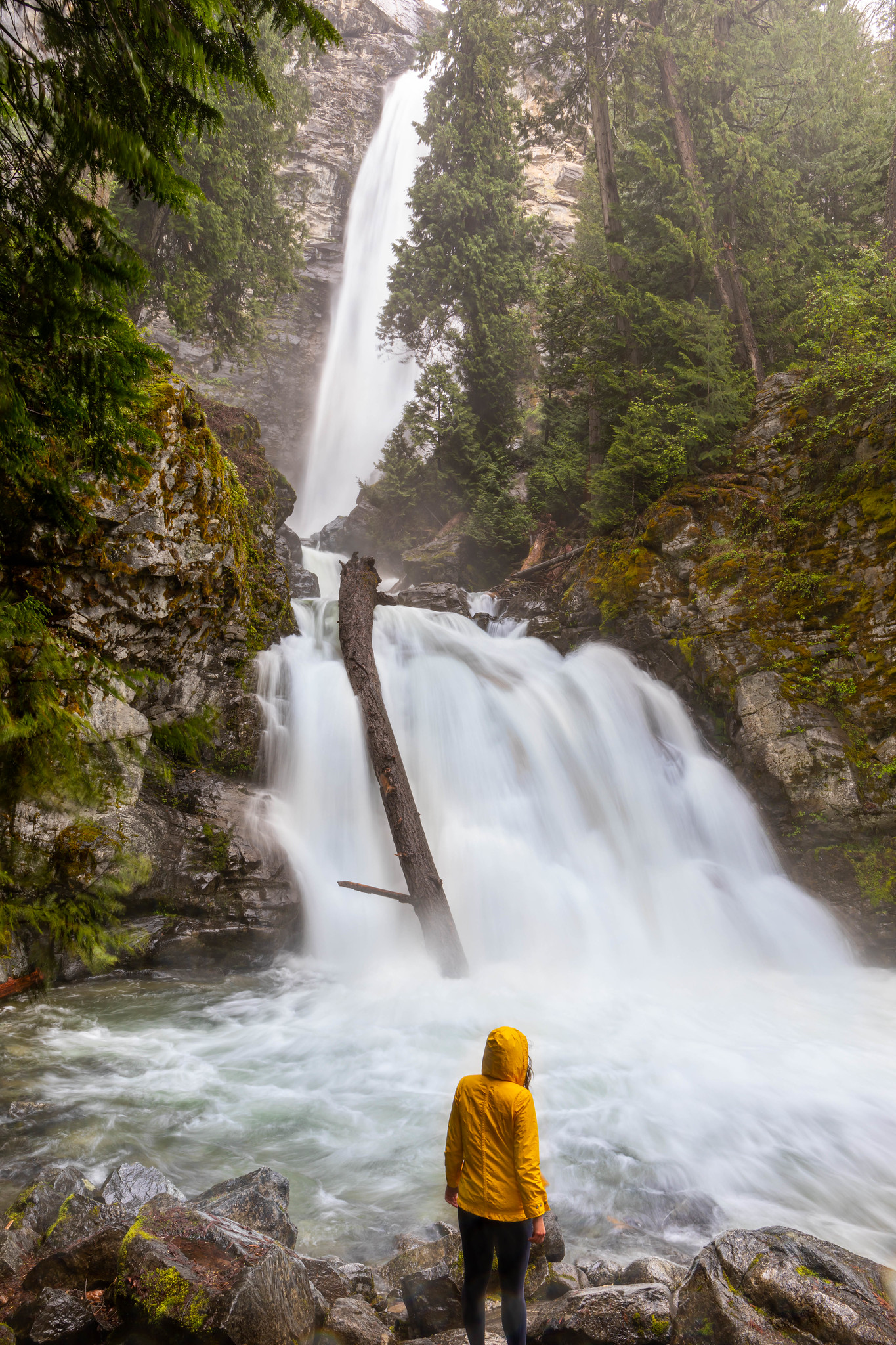05.26. North Cascades. Stehekin: Rainbow Falls
