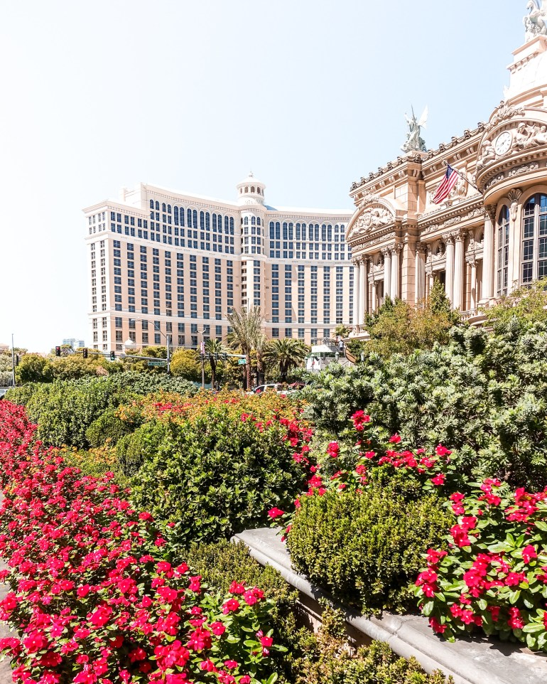How To Plan A Trip To Las Vegas - Flight, Hotel, Activities using Expedia | Wanderlustyle.com