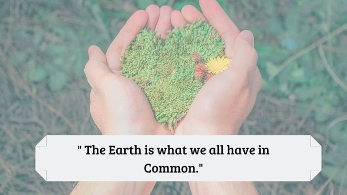 world environment day 2019 quotes