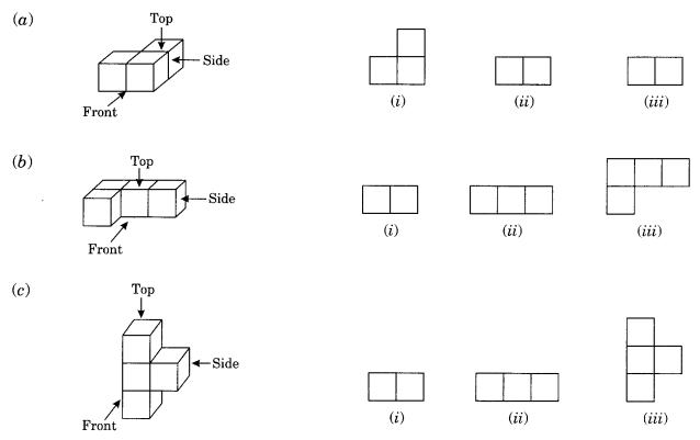 NCERT Solutions for Class 8 Maths Chapter 10 Visualising Solid Shapes Q3