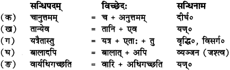 RBSE Solutions for Class 12 Sanskrit Chapter 3 मानवधर्मः 2