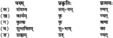 RBSE Solutions for Class 12 Sanskrit Chapter 3 मानवधर्मः 7