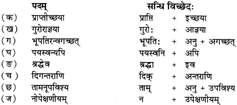 RBSE Solutions for Class 12 Sanskrit विजेत्र Chapter 7 नन्दिनीकथा 2