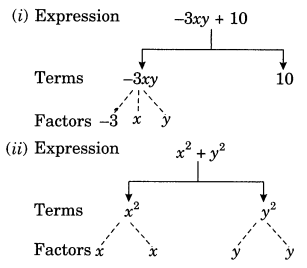 Algebraic Expressions Class 7 Extra Questions Maths Chapter 12 Q5
