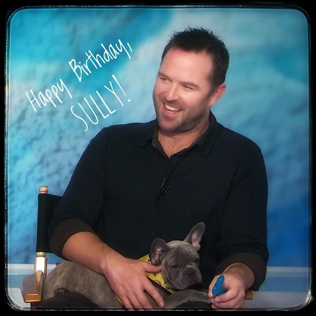 Happy Birthday Sully!
