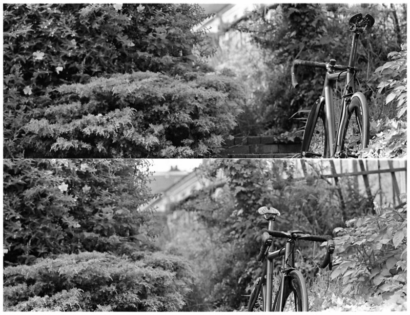 Mamiya 7 210mm Photo (Testing!)