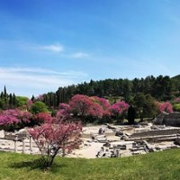 Travel: France - Saint-Rémy-de-Provence - Glanum