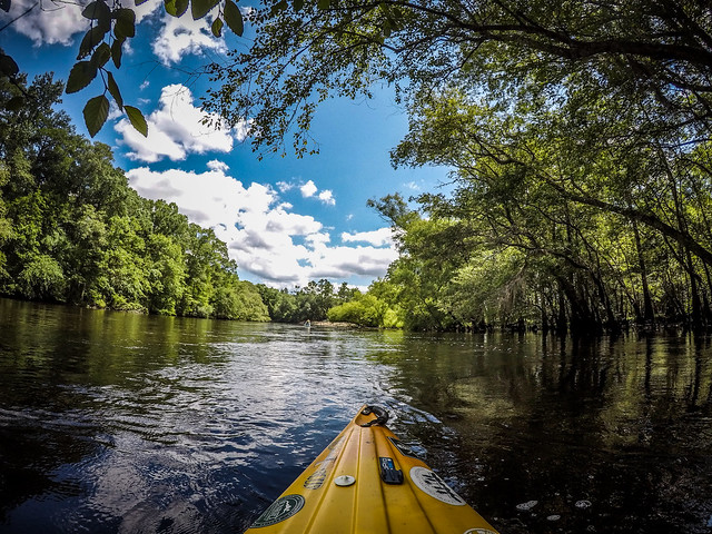 2019-06-15 Eleventh Annual Edisto River Rope Swing and Beer Commercial Float