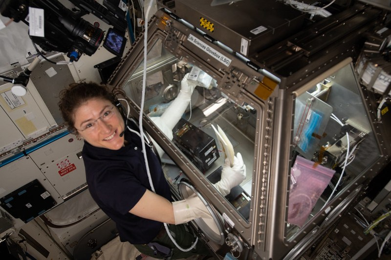 NASA astronaut Christina Koch conducts Kidney Cells research