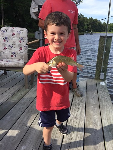 Five year old Vinny Spilker caught this white perch while visiting his uncle recently.