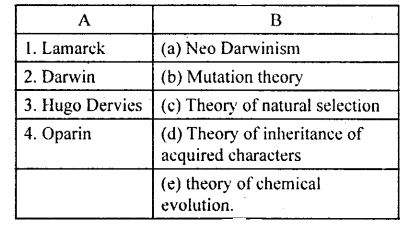 KSEEB Solutions for Class 8 Science Chapter 22 Evolution of Life