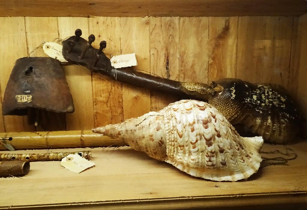 Instrumentos de musica de conchas y caparazon de animales Museo de America Madrid