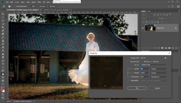 De afmetingen van de foto bij een resolutie van 600 dpi veranderen niet, maar de afdrukgrootte wordt plotseling erg klein omdat er zoveel meer pixels per inch afdruk nodig zijn.
