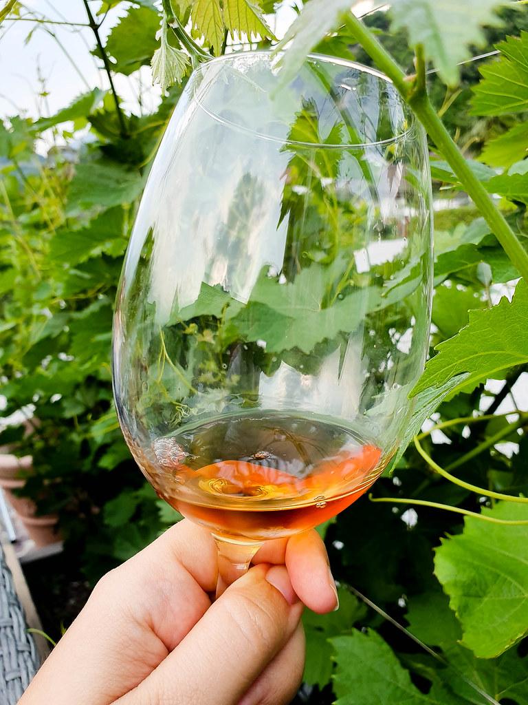 Vino Santo in a wine glass