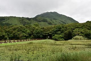 冷水坑生態池 | 眺望七星山 | king.f | Flickr