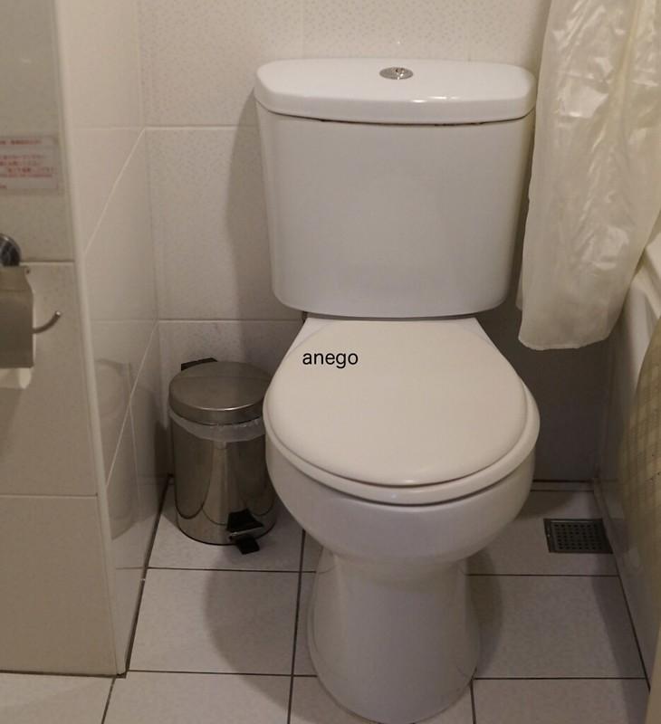 山水閣 トイレ