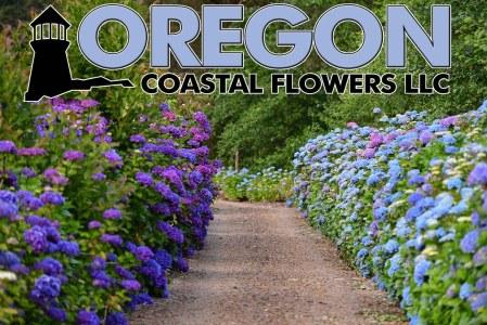 oregon-coastal-flowers-12-4