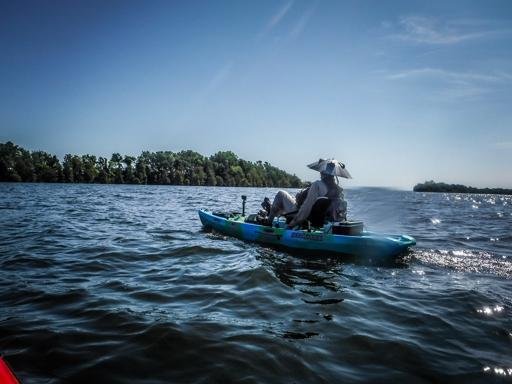Lake Marion - Ferguson-21