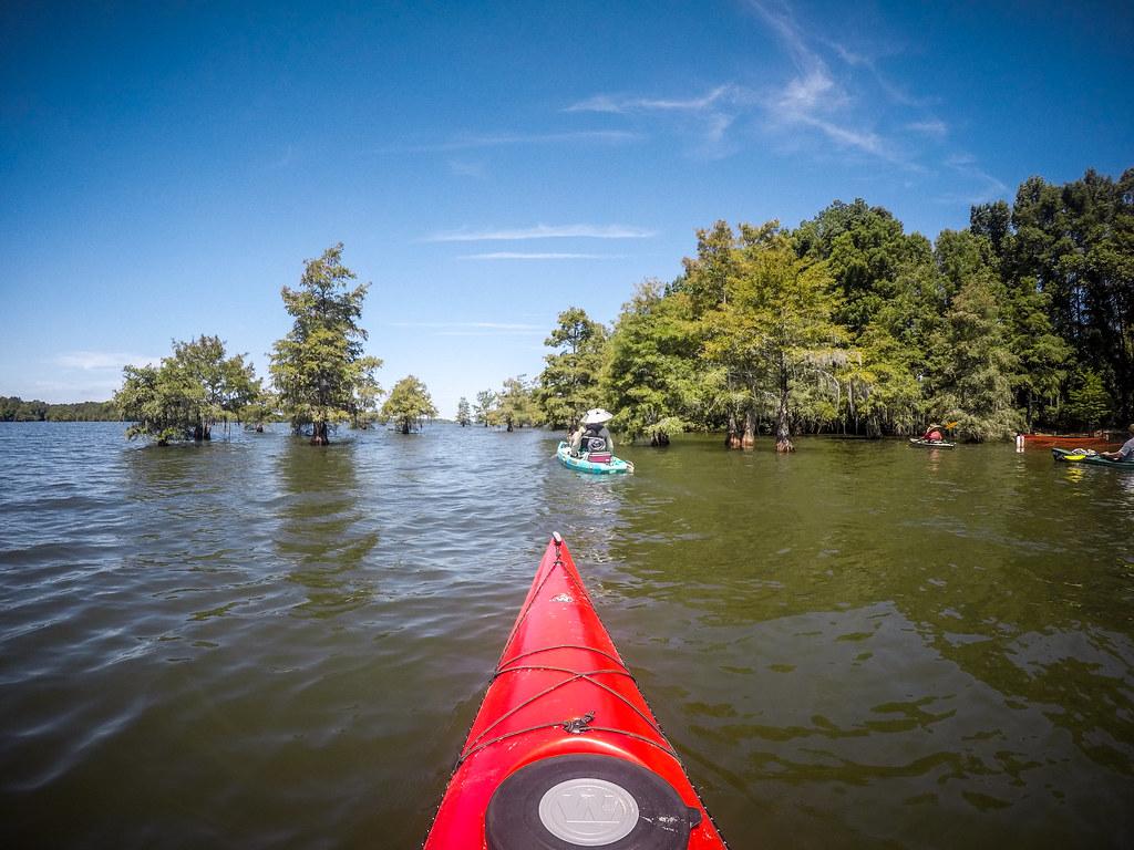 Lake Marion - Ferguson-94