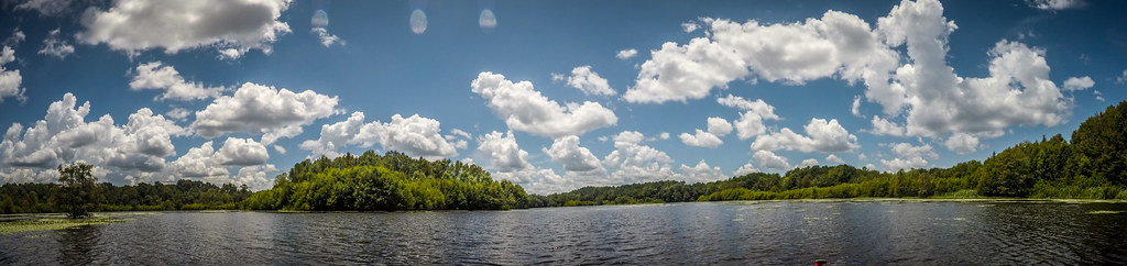 Lake Marion - Ferguson-147