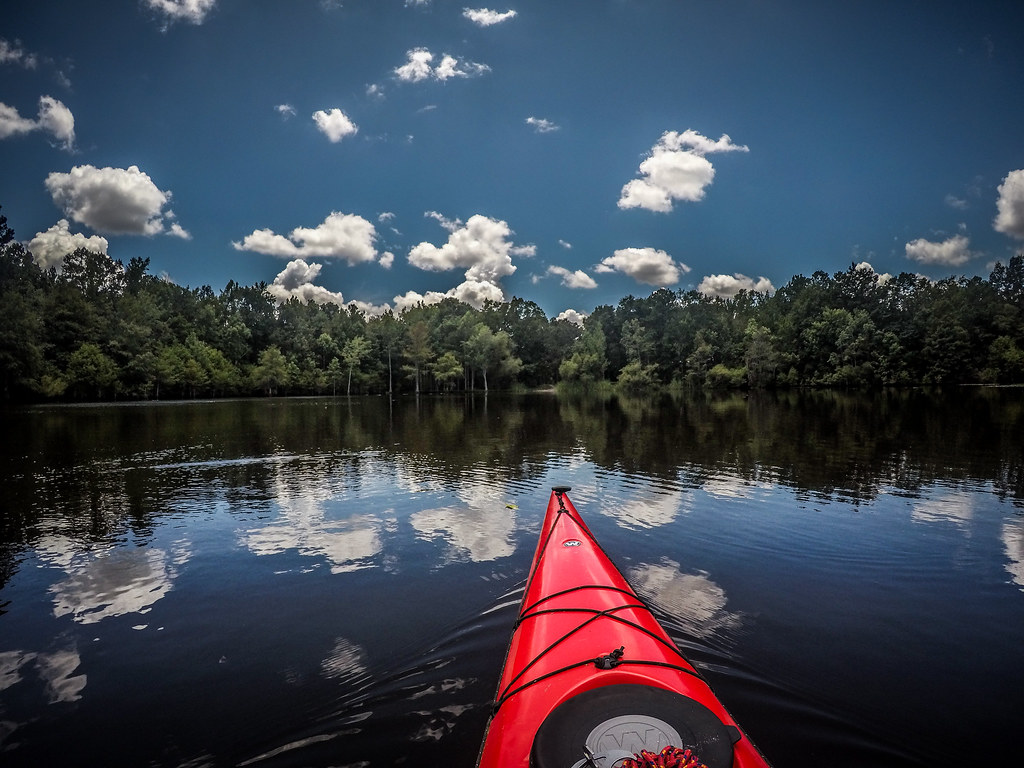 Lake Marion - Ferguson-174