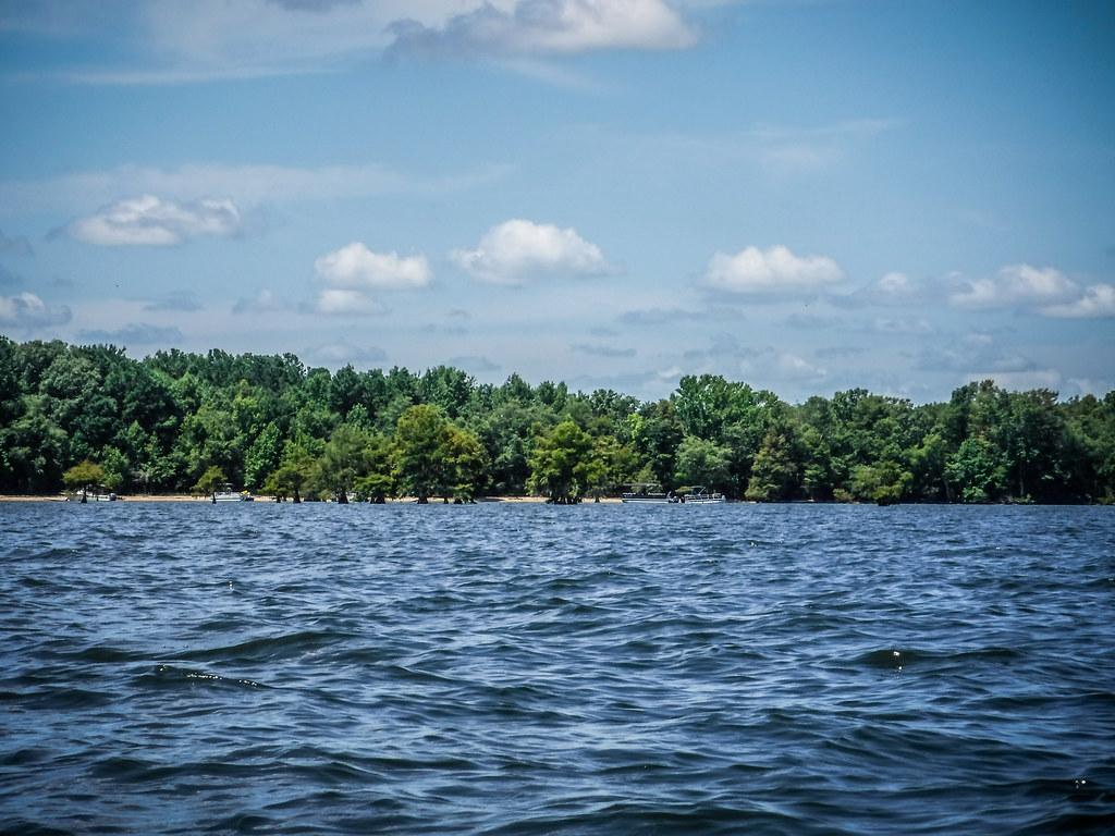 Lake Marion - Ferguson-118