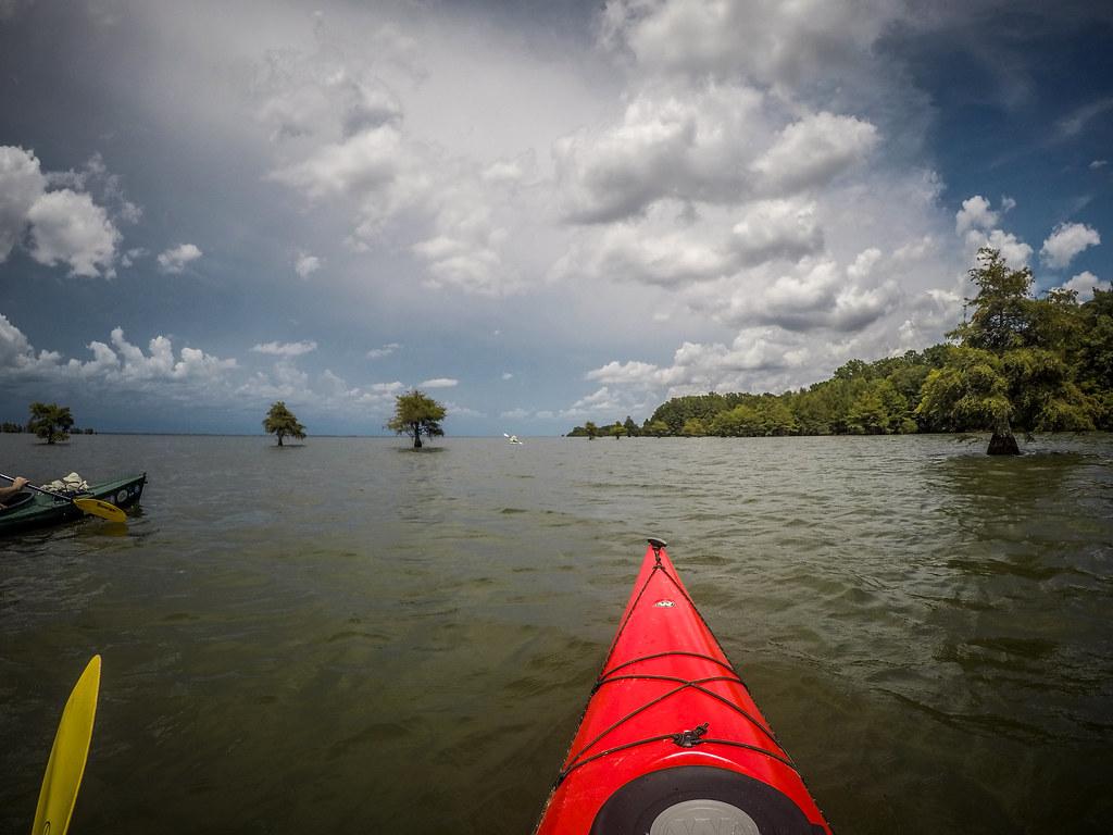 Lake Marion - Ferguson-224