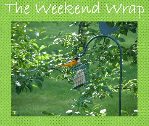weekend wrap 1