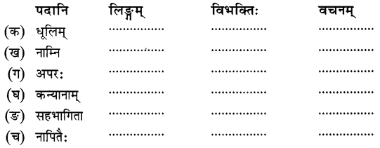 NCERT Solutions for Class 8 Sanskrit Chapter 11 सावित्री बाई फुले 1