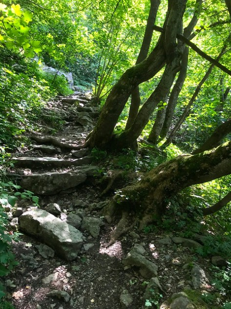 Boyana -- Walking to the Waterfall