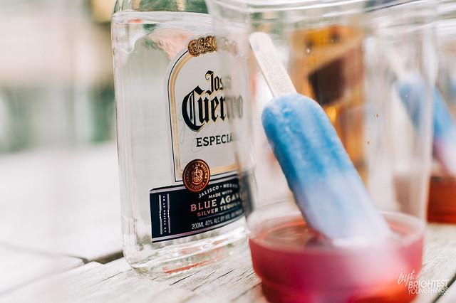 Popsicle Cocktail Taste Test-027-3004_PC NKarlin