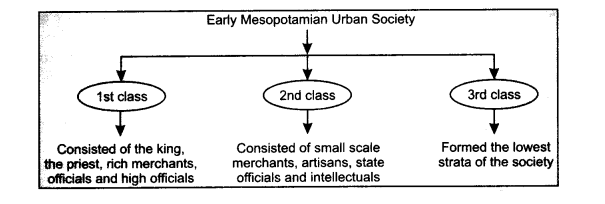 NCERT Solutions for Class 11 History Chapter 2 Writing and City Life 4