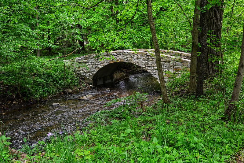 Black Partridge Woods
