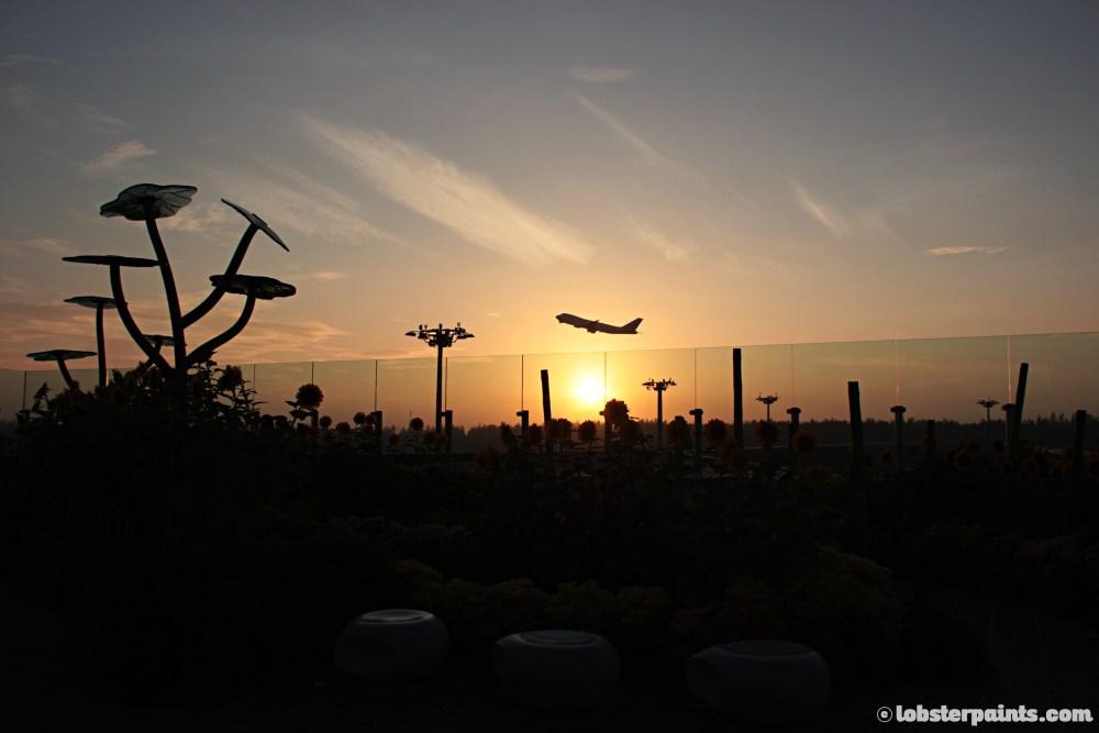 sunflower-garden--changi-airport-t2-singapore_13620397095_o