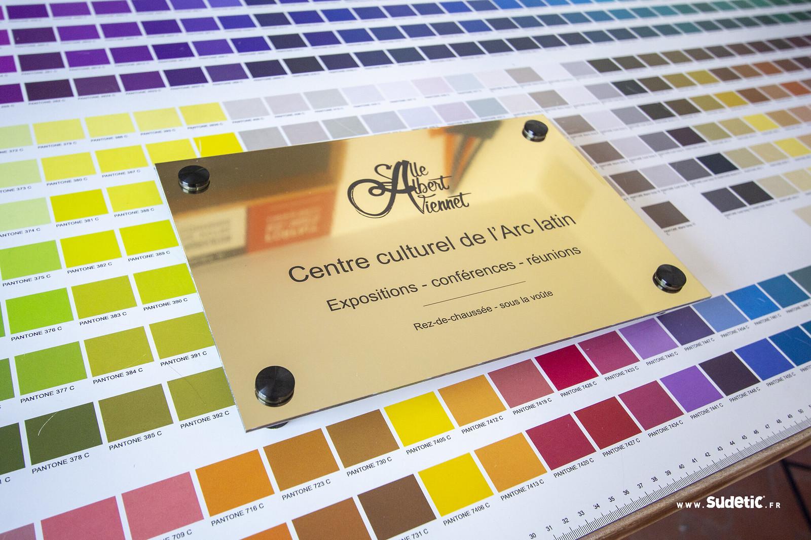 Sudetic Plaque or brillant Centre Culturel-2