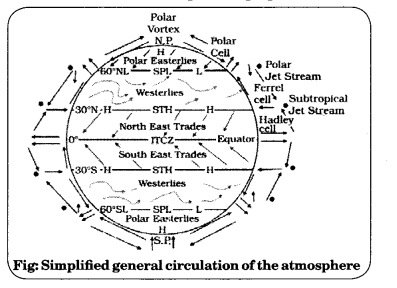 Class 11 Geography NCERT Solutions Chapter 10 Atmospheric