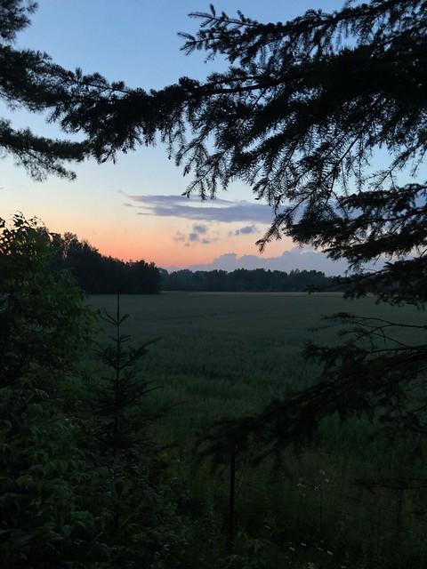 Kap-Kig-Iwan - sunset over a field