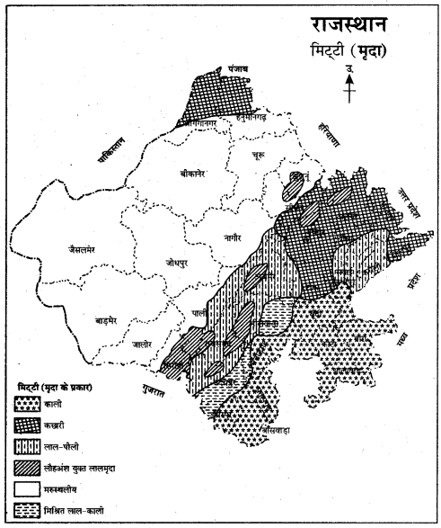 RBSE Solutions for Class 11 Indian Geography Chapter 13 राजस्थान जलवायु, वनस्पति व मृदा 4