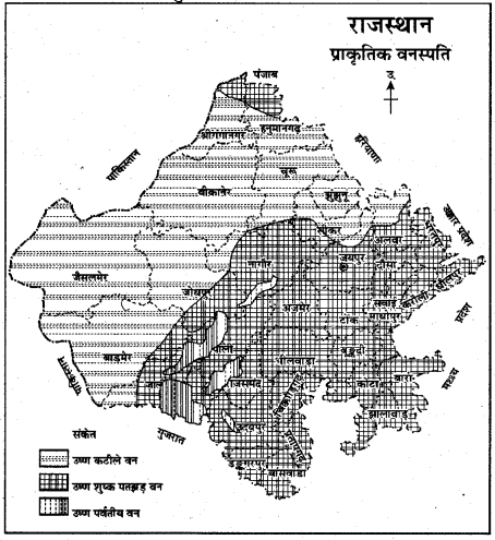 RBSE Solutions for Class 11 Indian Geography Chapter 13 राजस्थान जलवायु, वनस्पति व मृदा 8