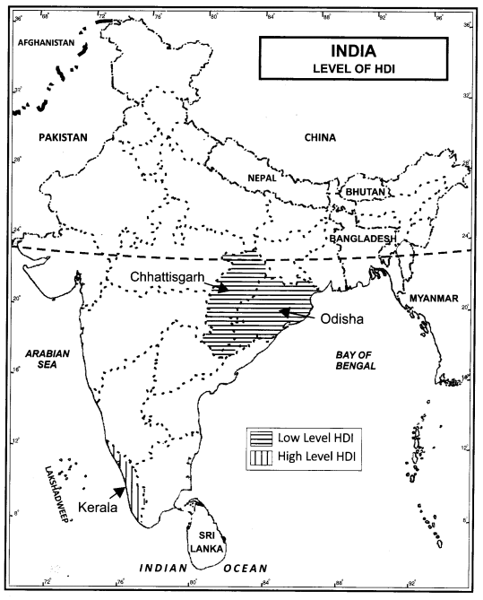 Class 12 Geography NCERT Solutions Chapter 3 Human