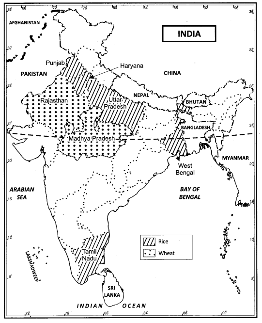 Class 12 Geography NCERT Solutions Chapter 5 Land