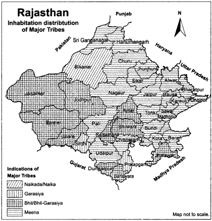 RBSE Solutions for Class 12 Geography Chapter 25 Rajasthan Population and Tribes 2