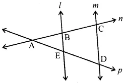 Maths ML Aggarwal Class 6 Chapter 10 Basic Geometrical Concept Check Your Process